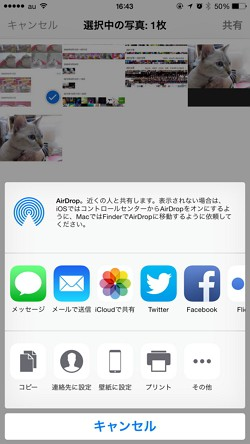 iOS 8の使い方:写真アプリが超進化!